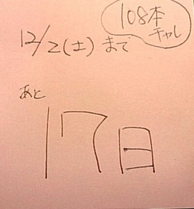 IMG_20171115_003740.JPG